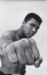 Dernières parutions sur Boxe , sports de combat, Ali. Une vie