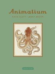 Dernières parutions sur Vie des animaux, Animalium