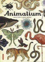 Dernières parutions sur Zoologie, Animalium