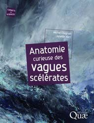 Dernières parutions sur Mers et océans, Anatomie curieuse des vagues scélérates