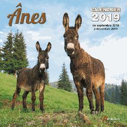 Souvent acheté avec Vaches de nos regions, calendrier 2019, le Anes : calendrier 2019 : de septembre 2018 à décembre 2019