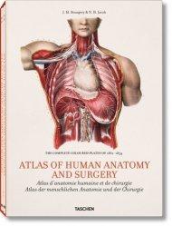 Souvent acheté avec Battements d'ailes, le Atlas d'anatomie humaine et de chirurgie - Tome 1 et 2