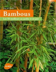 Dernières parutions dans Médium, Bambous