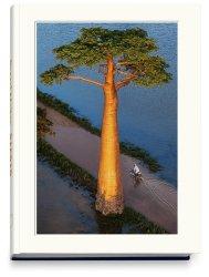 Dernières parutions sur Beaux livres, Baobab : l'arbre magique