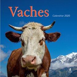 Nouvelle édition Calendrier vaches