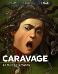 Dernières parutions dans Le musée idéal, Caravage. La force de l'émotion