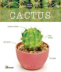 Dernières parutions sur Cactées - Succulentes - Plantes tropicales, Cactus