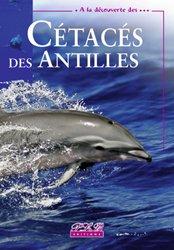 Dernières parutions dans À la découverte des ..., Cétacés des Antilles