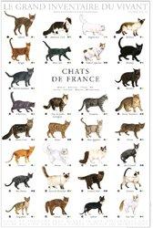 Dernières parutions dans Le grand inventaire du vivant, Chats de France