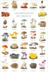 Dernières parutions sur Affiches - Poster, Champignons de France