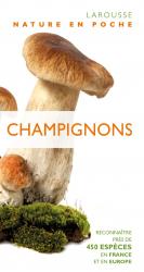 Dernières parutions sur Champignons, Champignons