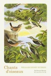 Dernières parutions dans De natura rerum, Chants d'oiseaux