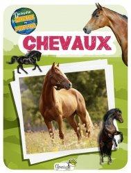 Dernières parutions sur Vie des animaux, Chevaux