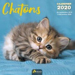 Dernières parutions sur Herbiers - Agendas - Calendriers - Almanachs, Chatons