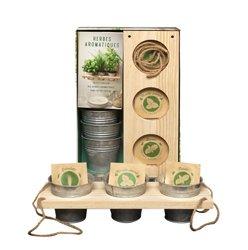 Dernières parutions sur Epices et aromates, Coffret Herbes aromatiques