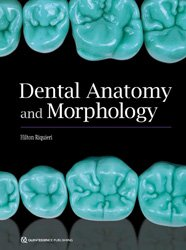Dernières parutions sur Publications en anglais - English books, Dental Anatomy and Morphology