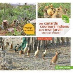 Dernières parutions sur Basse-cour, Des canards coureurs indiens dans mon jardin