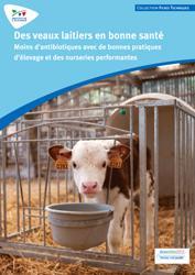 Souvent acheté avec Traite des vaches laitières, le Des veaux laitiers en bonne santé