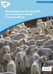Souvent acheté avec Guide de l'alimentation du troupeau bovin allaitant, le Des agneaux en bonne santé