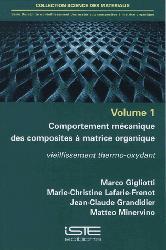 Dernières parutions sur Sciences des matériaux, Durabilité et vieillissement des matériaux composites à matrice organique