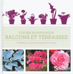 fleurs en pots pour balcons et terrasses conseils pour cultiver ses plantes toute l 39 ann e. Black Bedroom Furniture Sets. Home Design Ideas
