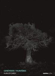 Dernières parutions dans Foto, Genévriers thurifères (juniperus thurifera)
