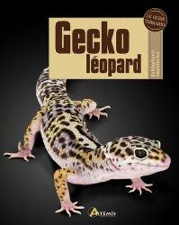 Souvent acheté avec Grenouilles arboricoles, le Gecko léopard