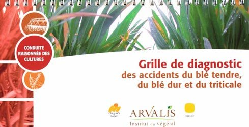 Souvent acheté avec Stockage des produits phytosanitaires: comment construire et aménager son local, le Grille de diagnostic des accidents du blé tendre, du blé dur et du triticale