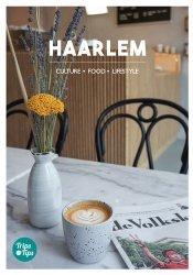 Dernières parutions sur Guides Pays-Bas, Haarlem