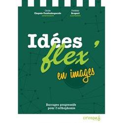 Dernières parutions sur Langage écrit, Idées fixes en images