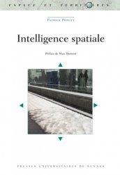Dernières parutions dans Espace et Territoires, Intelligence spatiale