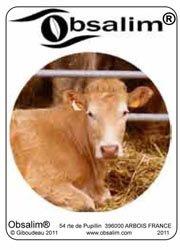 Souvent acheté avec Toutes les vaches de France. D'hier, d'aujourd'hui et de demain, le Jeu de cartes bovins
