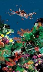 Dernières parutions sur Biodiversité - Ecosystèmes, Je suis au monde