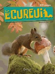Dernières parutions sur Rongeurs, L'écureuil