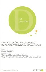 Dernières parutions sur Droit fiscal international, L'accès aux énergies fossiles en droit international économique