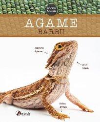 Dernières parutions sur Reptiles, L'agame barbu