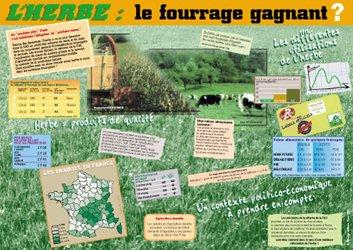 Dernières parutions dans Situations-problèmes, L'herbe, le fourrage gagnant ? (édition 2008)