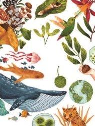 Dernières parutions sur Pour les enfants, La nature