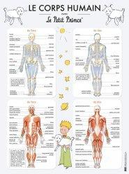 Dernières parutions sur Pour les enfants, Le corps humain avec le petit prince - poster