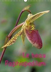 Dernières parutions sur Fleurs et plantes, Le beau Paphiopedilum. Edition 2021