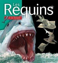 Dernières parutions dans A la loupe, Les Requins