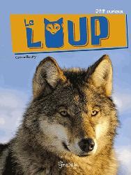 Dernières parutions sur Loup, Le loup