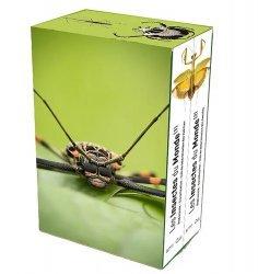 Souvent acheté avec Guide des libellules de France et d'Europe, le Les Insectes du Monde