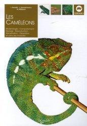 Souvent acheté avec Les lézards, le Les caméléons