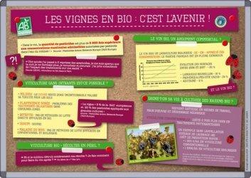 Dernières parutions dans Situations-problèmes, Les vignes en bio : c'est l'avenir !