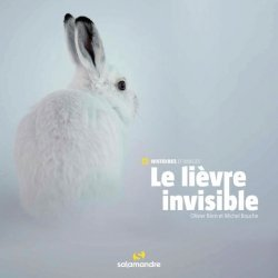 Dernières parutions sur Animaux, Le lièvre invisible