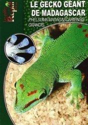 Souvent acheté avec L'Axolotl, le Le gecko géant de Madagascar