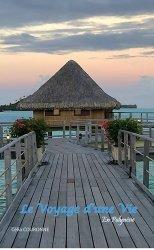 Dernières parutions sur Récits de voyages-explorateurs, Le voyage d'une vie en Polynésie