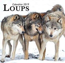 Dernières parutions sur Loup, Loups, calendrier 2019
