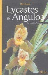 Dernières parutions dans Botanique, Lycastes et Anguloa